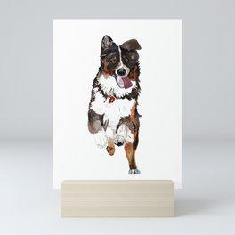 Australien Shepherd Mini Art Print