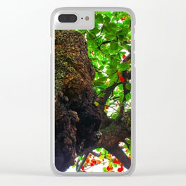 big tree with green leaves and red leaves Clear iPhone Case