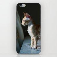hercules iPhone & iPod Skins featuring Hercules by Ruta Dok