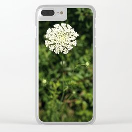 Queen Anne's Lace. Clear iPhone Case