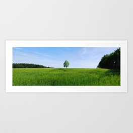 Field and Tree Panorama Art Print