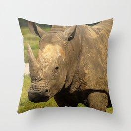 Sexy Rhino photography Throw Pillow
