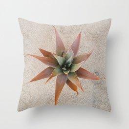 Mexico Succulent Throw Pillow