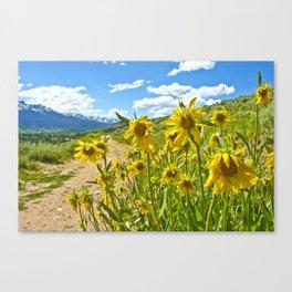 Vibrant trail Canvas Print