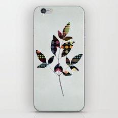 Poise iPhone & iPod Skin