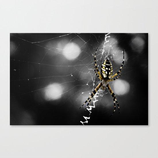 Banana Spider Macro Color Pop Canvas Print