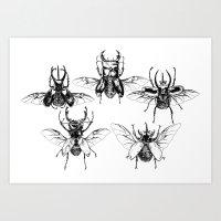Scarabs Art Print