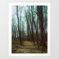 Deep Dark Woods Art Print
