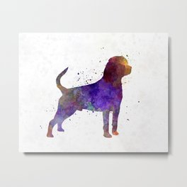Rottweiler in watercolor Metal Print