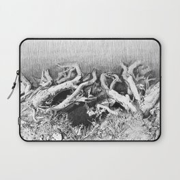 Transitions in nature part 2 Laptop Sleeve