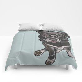 Zoe Comforters