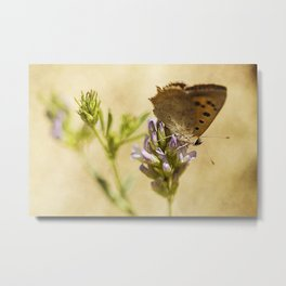 meadow lifes #6 Metal Print