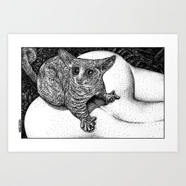 asc 880 - Le galago (Queue choisir I) Art Print