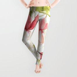 Сolibri Leggings