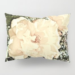 Sandy Pink Roses With Bokeh Pillow Sham