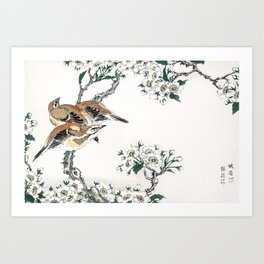 Meadow Bunting And Pear Tree Flowers - Vintage Japanese Woodblock Print Art By Numata Kashu  Art Print