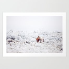 Two Winter Horses Art Print