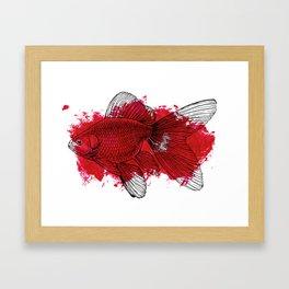 big red fish Framed Art Print