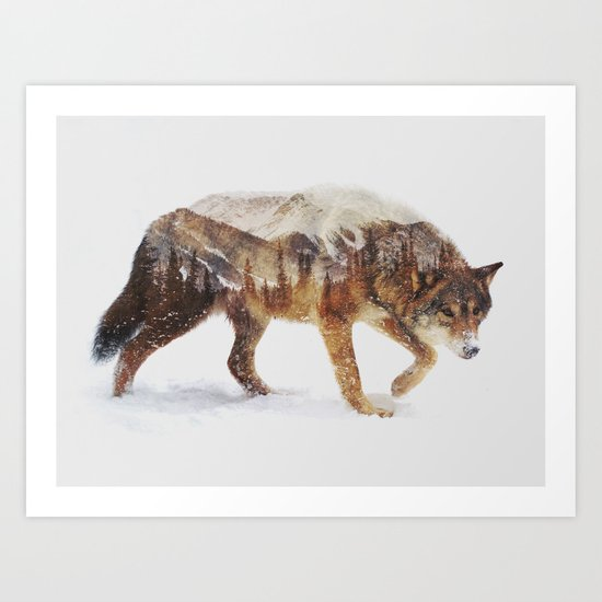 Arctic Wolf Art Print By Andreas Lie Society6