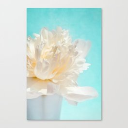 WHITE PEONY-DREAM Canvas Print