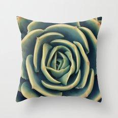 Echeveria x Imbricata Succulent Throw Pillow
