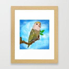 Skittles the Love Bird Framed Art Print