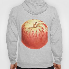 Apple Illustration Drawing Hoody
