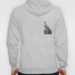 Mourning Dove on a Fence Hoody