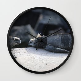 Exhausted Iguanas Wall Clock
