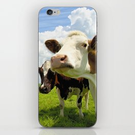 Four chatting cows iPhone Skin
