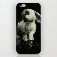 bunny iPhone & iPod Skins featuring Bunny by Digital Dreams