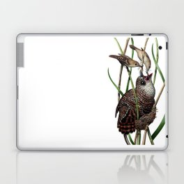 Baby Bird I Laptop & iPad Skin