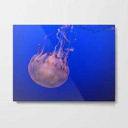 Jellyfish in the Open Sea Metal Print