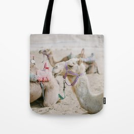 Sassy Camel Friends - Holy Land Fine Art Film Photography Tote Bag