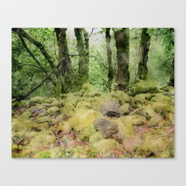 Watercolor in the Woods Edit Canvas Print