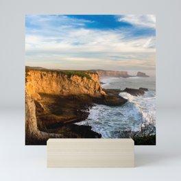 Santa Cruz California Beach Mini Art Print