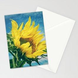 Windblown Stationery Cards