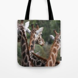 Lovely Ladies Tote Bag