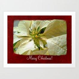 Pale Yellow Poinsettia 1 Merry Christmas P5F1 Art Print