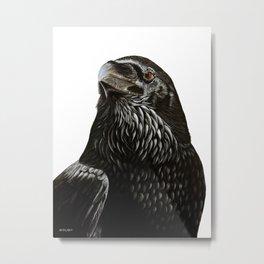 Black Crow Painting. Metal Print