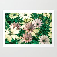 daisies Art Prints featuring Daisies by Loredana