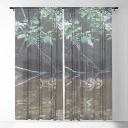 Baby talk Sheer Curtain