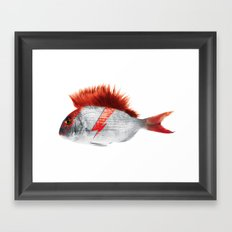 FISHY STARDUST Framed Art Print