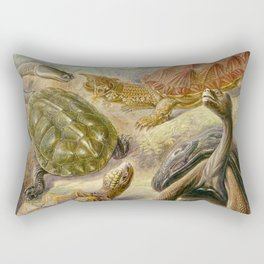 Ernst Haeckel Chelonia 1904 Poster Rectangular Pillow