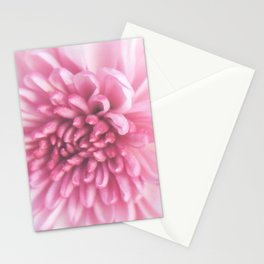 Perfection Stationery Cards