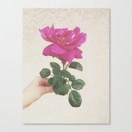 Melrose Canvas Print