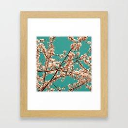 spring tree XVII Framed Art Print