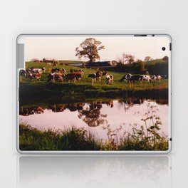 Cows in the Canal Laptop & iPad Skin