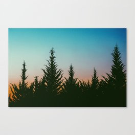 TREES - SUNSET - SUNRISE - SKY - COLOR - FOREST - PHOTOGRAPHY Canvas Print