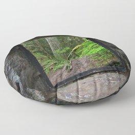 Stone House Window Floor Pillow